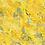 Thumbnail: Mimosas au printemps
