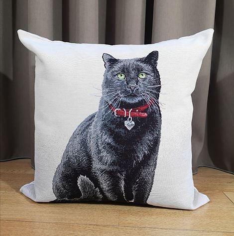 CUSHION CAT COL.1.jpg