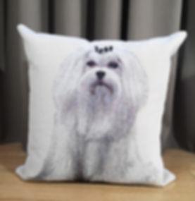CUSHION DOG COL.4.jpg