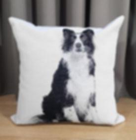 CUSHION DOG COL.3.jpg