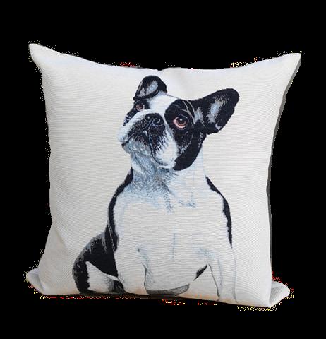 CUSHION DOG COL.1 | 45x45cm