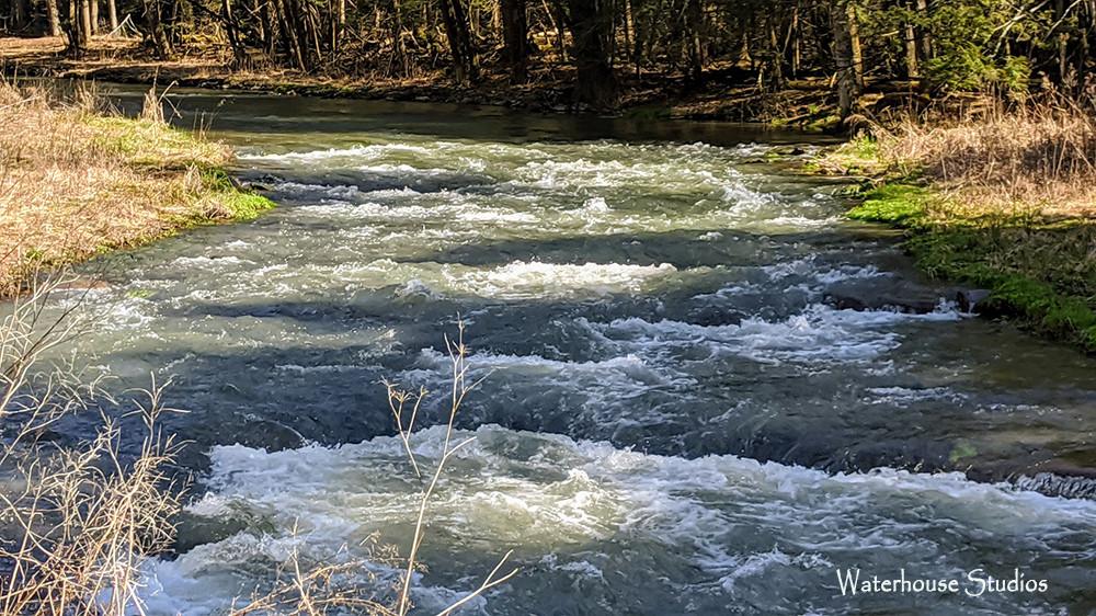 Elk Creek.jpg