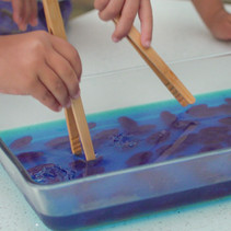 Fine Motor Skills Development: Fish-Hunt