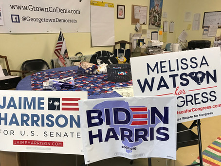 Biden/Harris/Sabb Signs are Here