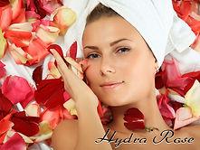 hydra rose valcena