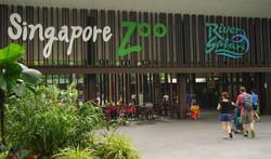 Singapore Zoe