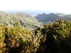 The Anaga Rural Park