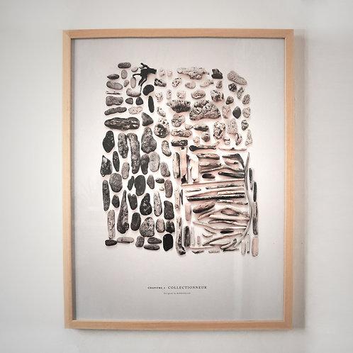 Chapitre1_ Collectionneur / Mixed driftwoods