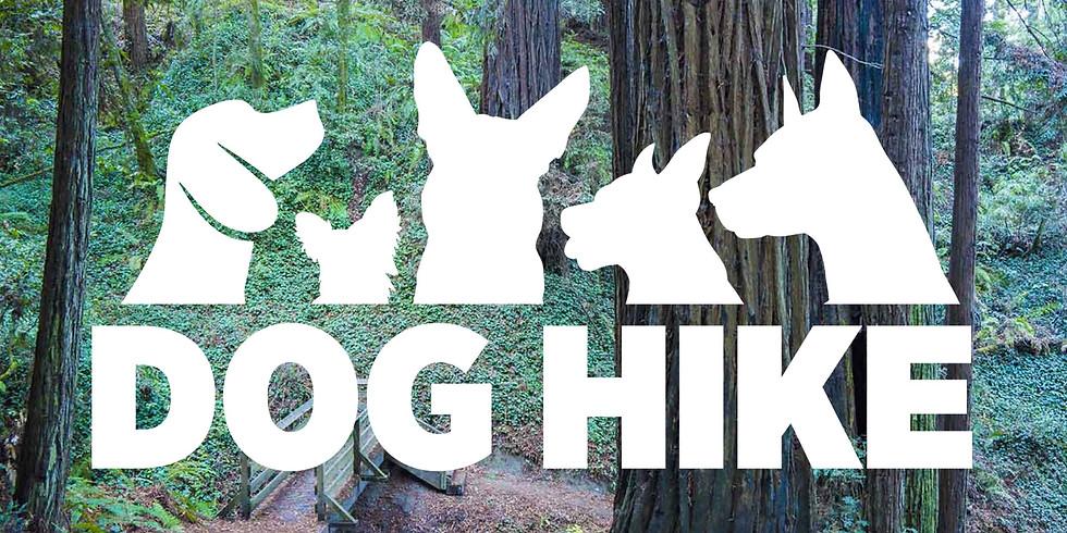 Dog Hike (Nisene Mark, Aptos, CA)