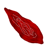 RED YONI.png