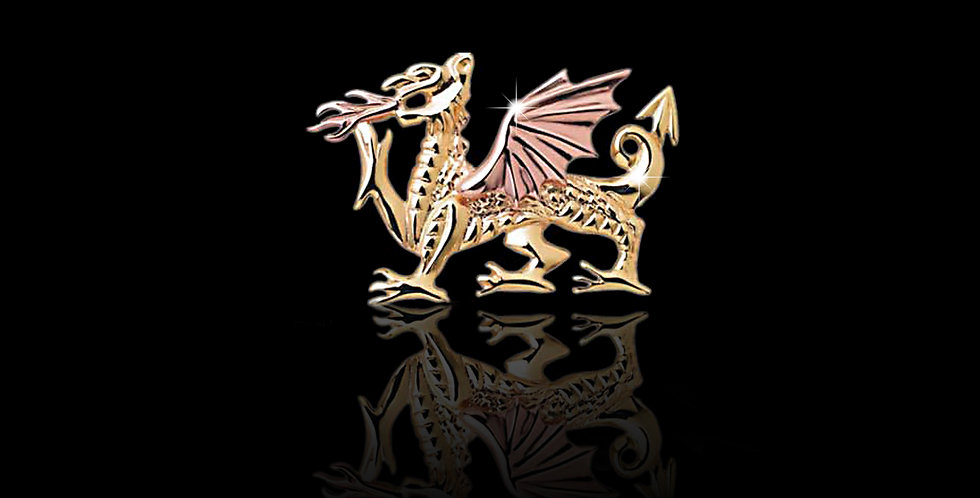 Fiery Welsh Dragon Brooch in Yellow and Rose Gold 9ct WB53
