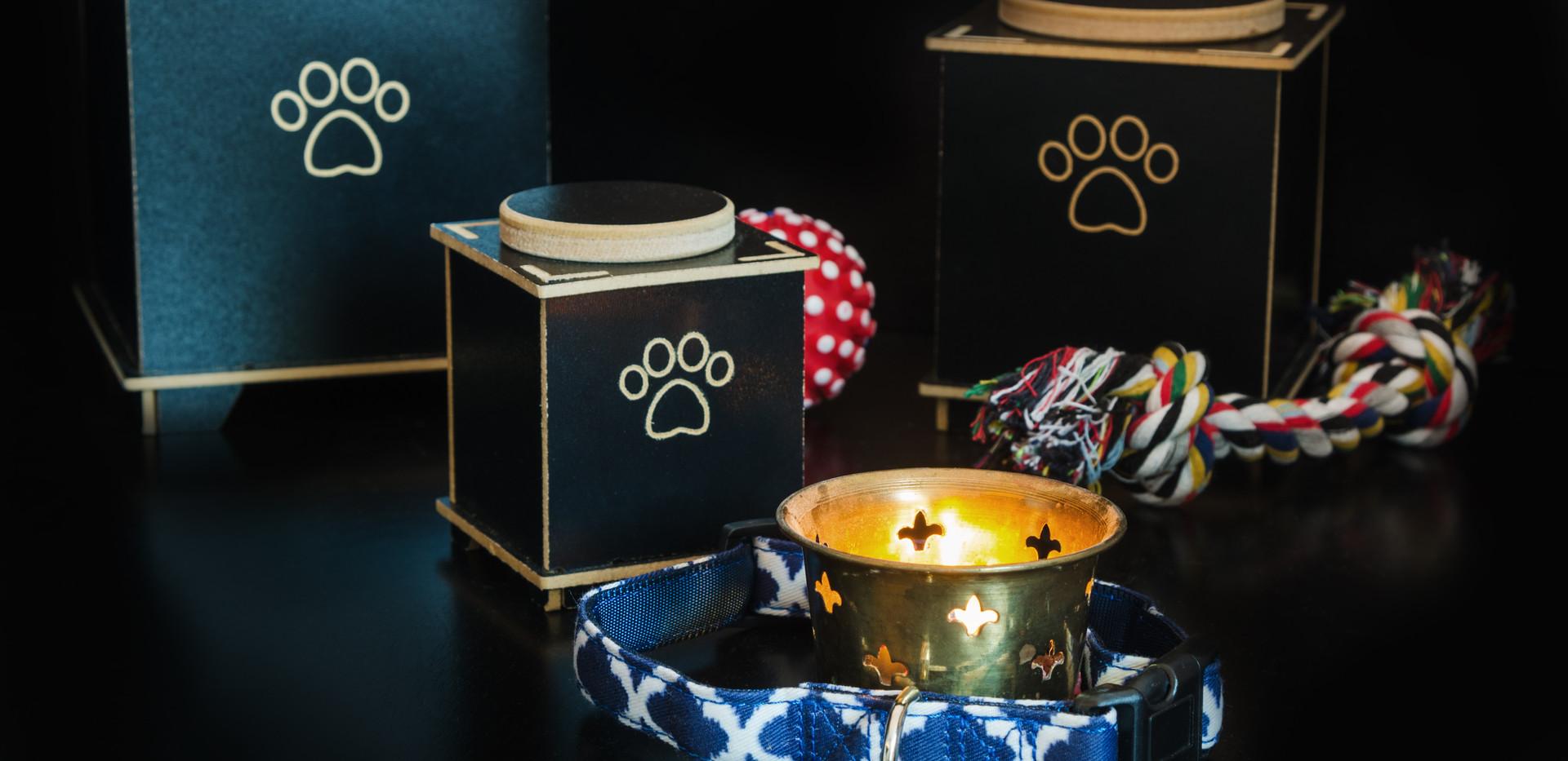 Cremazione Animali da affezione