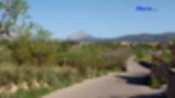 2012-04-01-A_edited.jpg
