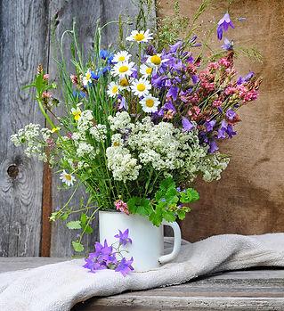 wildflowers .jpg