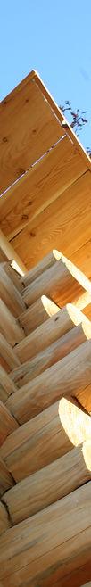 Sauna in tronchi