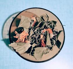 digestive sariette