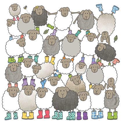 FUN CARTOON SHEEP CARD (pack of 6)