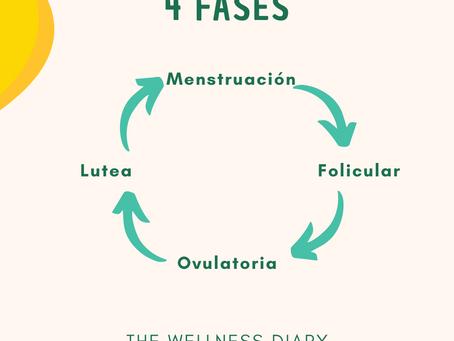 Conoce tu Ciclo Menstrual