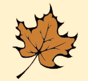 Bonze Leaf for Web.png