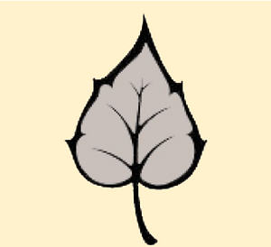 Silver Leaf for web.png