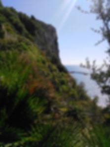 Camino Falconera 2.jpg