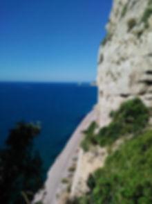 Camino Falconera.jpg