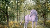 unicorn-1981219__340unicorn1.jpg