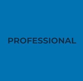 professional-fatturazione-24.png
