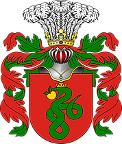 Wąż (Anguis, Serpens, Wężyk)