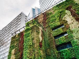 green hotel.jpg