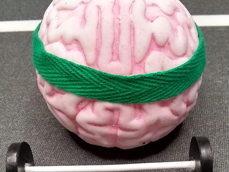 Top neuroscience tips for more effective learning