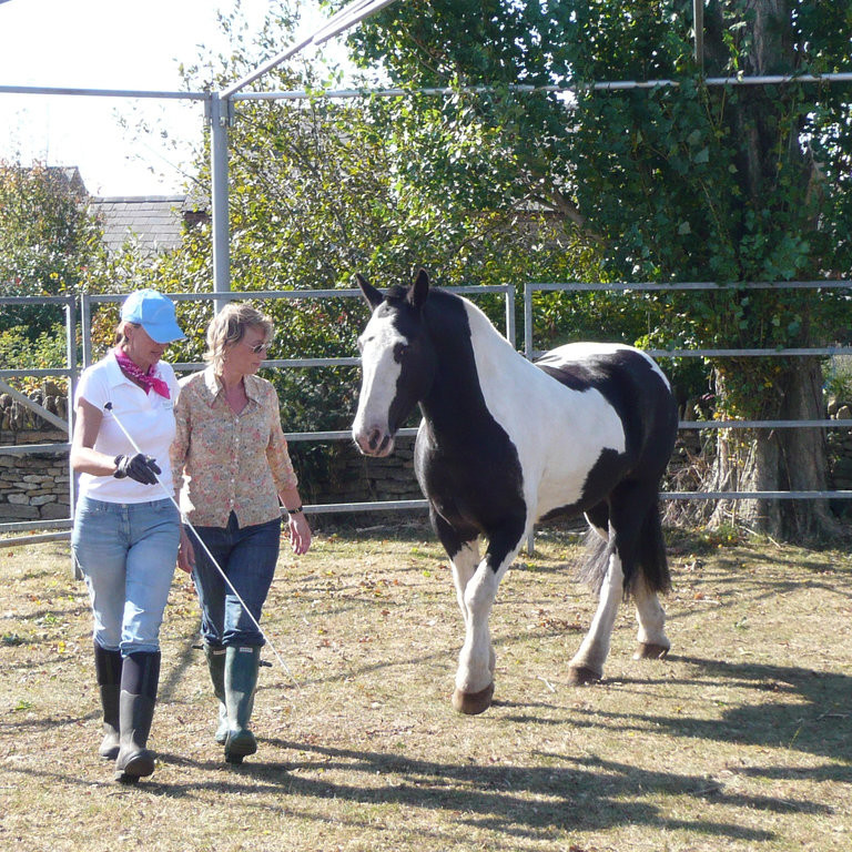 POSTPONED - Leadership & Horsepower: An Experience of a Lifetime!