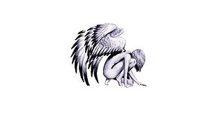 The Phoenix Rising Foundation