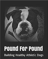 Pound for POund cover art.jpg