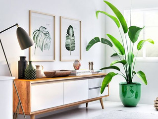 How to make your rental feel like your own home