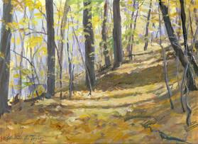 Backyard Creek Trail, Acrylic
