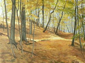 Conwell's Path, Acrylic