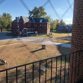 Hawks Ward View