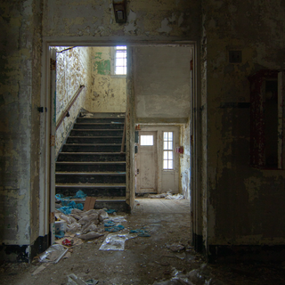 Excited Male Ward Staircase