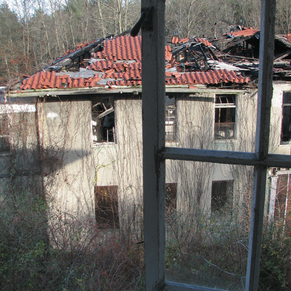 Fire Damage to Extension