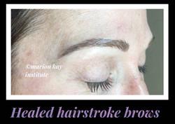 Healed Hairstroke Brows