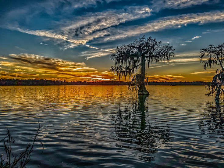 """Lake Martin single cypress sunset"" printed photo canvas"