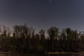 NightShooting-4.jpg