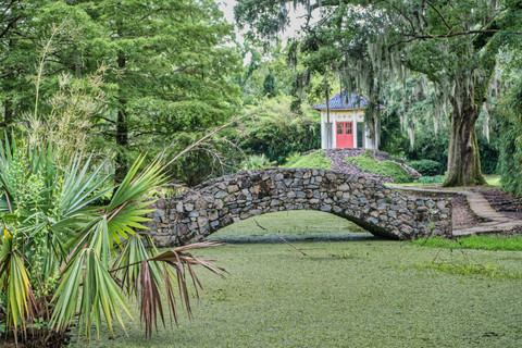 Jungle Gardens-13.jpg