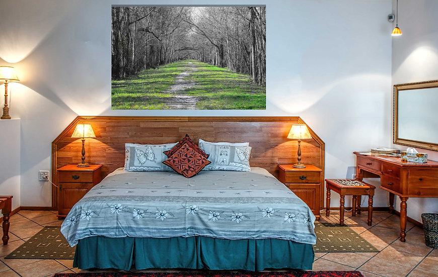 """Tranquil trail"" printed photo canvas"