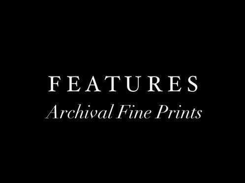 "8x10"" Fine Prints - Pick your print"