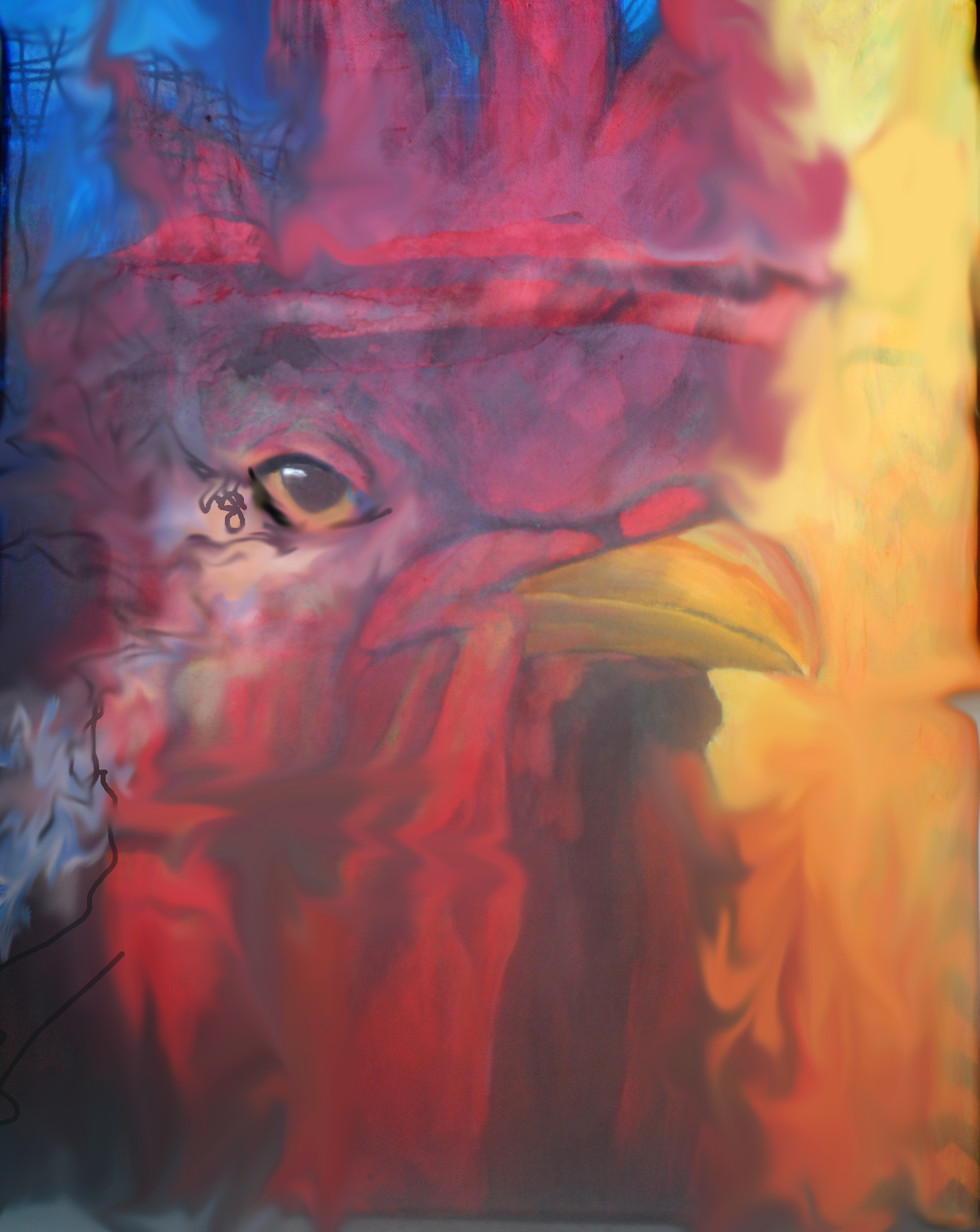 rooster 1_4 x 5