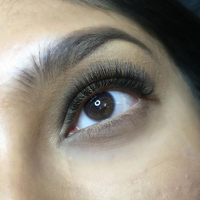 Mixed Tray B Curl PBT Synthetic Silk Eyelashes