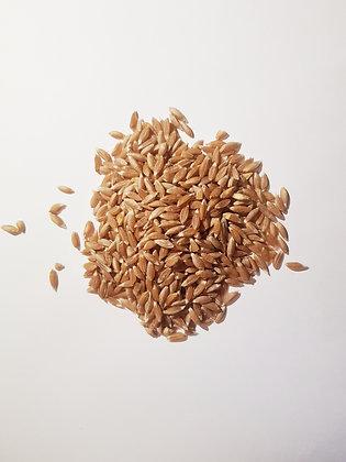 Зерно полбы, 400г.