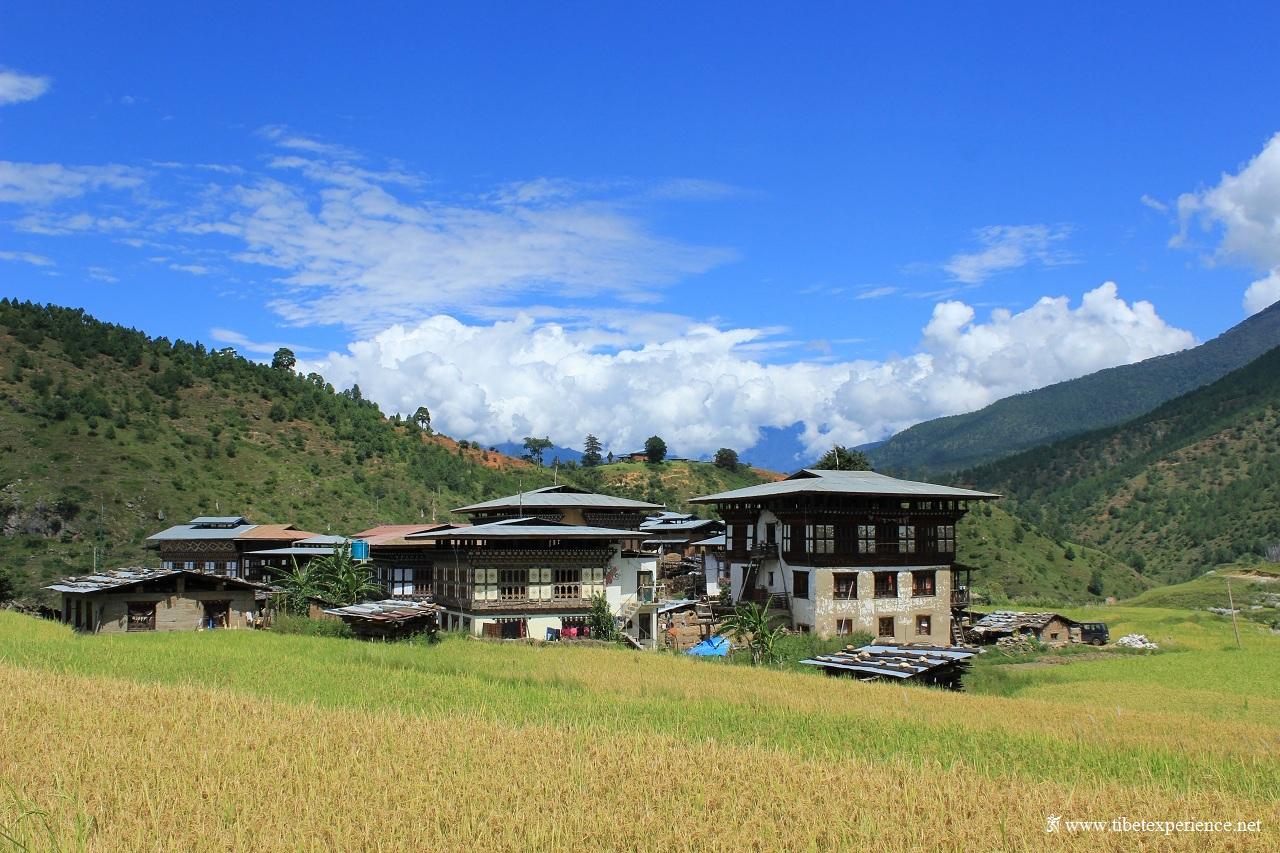 Бутан, Пунакха